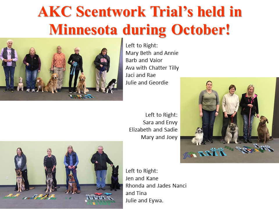 October AKC Nosework Stars